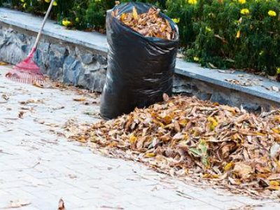 rubbish-removal-armadale-green-waste-collection-1